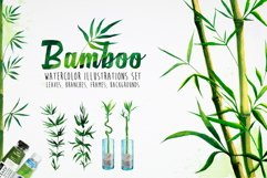 Bamboo. Watercolor illustrations. Product Image 1