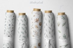 Winter plants watercolor collectoin Product Image 12