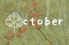 October leaves doodle font Product Image 3