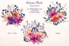 Autumn Plants Product Image 3