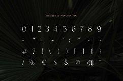 Prestigious - Elegant & Luxury Typeface Product Image 4
