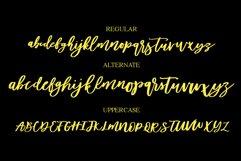 Diveil Script Product Image 5