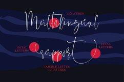 Fatal Grace. Signature Script Font. Product Image 4