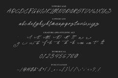 Rattini Signature Handwritten Script Font Product Image 3