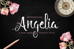 27 IN 1 FONT BUNDLE - 98 OFF Double Discount Product Image 5