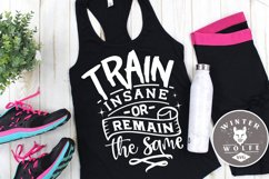 Train insane or remaing the same SVG EPS DXF PNG Product Image 1