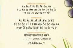 Web Font Firetail Font Product Image 2