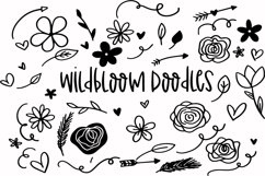 Wildblooms Handwritten Font Product Image 3