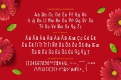 Reds Velvetos - Playful & Cute Font Product Image 5