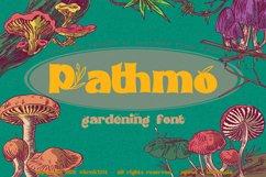 Pathmo Product Image 2