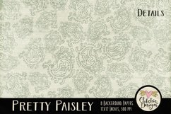 Paisley Background Textures - Shabby Pretty Paisley Papers Product Image 6
