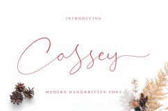 Cassey Product Image 1