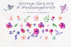 Spring Flowers and Hummingbirds Wanercolor Set Product Image 14