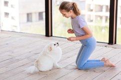 Cute teenage girl training her spitz dog at home Product Image 12