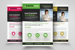 Business Solutions Consultant Flyer Product Image 1
