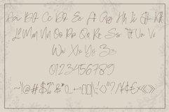 Hand Writing Font Bundle Product Image 5