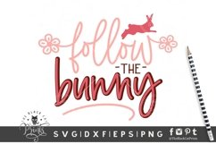 Follow the Bunny SVG | Easter SVG | Bunny SVG Cut File Product Image 1