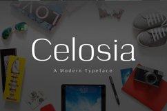 Celosia Product Image 1