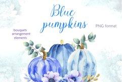 Blue pumpkins Product Image 1