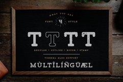 Tigreal Font Family BONUS Illustrations Product Image 5
