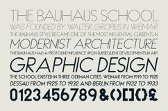 HAUS Sans Bold Product Image 5