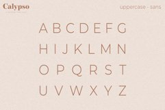Calypso // A Modern Font Duo Product Image 5