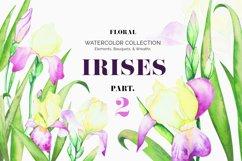 Irises. Watercolor Floral Set. Part2 Product Image 1