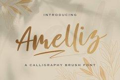 Amelliz - Calligraphy Brush Font Product Image 1