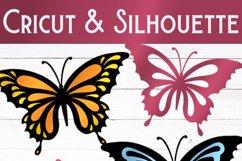 Butterfly SVG Bundle   27 Butterfly SVGs Product Image 6