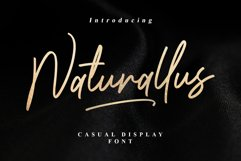 Naturallus Stylish Font Product Image 1