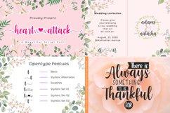 Best Seller Calligraphy Font Bundle Product Image 13