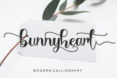 Lovely Spring Bundle - 21 fonts in 1 Product Image 6