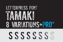 Vintage Pack-17 fonts and elements Product Image 1