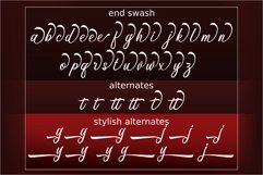 Anthemy Script Product Image 8