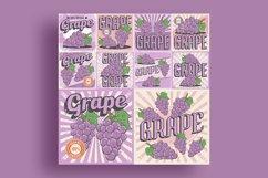 Grape Vintage Retro Signage Vector Set Product Image 1