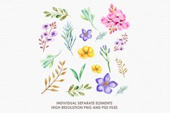 Astrantia - Digital Watercolor Floral Flower Style Clipart Product Image 2