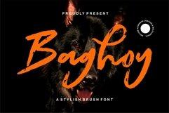 Web Font Baghoy - A Stylish Brush Font Product Image 1