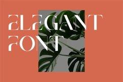 Brescia   Modern Serif Product Image 5