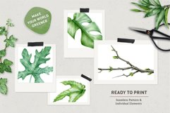 Midori Green Leaf Watercolor Set, Hand-Painted Collection Product Image 3