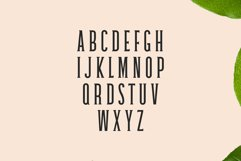Galvin Slab Serif Font Family Pack Product Image 2