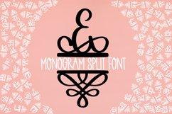 Monogram Split Letters With Flourish Font Product Image 2