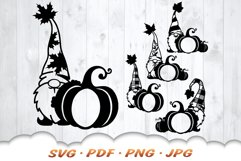 Fall Monogram Garden Gnomes SVG Bundle Product Image 4