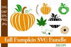 Fall Pumpkin SVG Bundle - Fall SVGs - Fall SVG Cut File Product Image 1