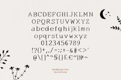 Farmhouse serif font Product Image 6