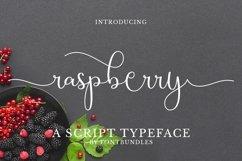 Web Font Raspberry Product Image 1