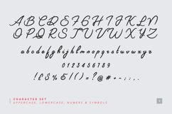 Riviera - Signature Font Product Image 5