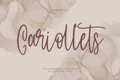 Cariollets Handwritten Script Font Product Image 1