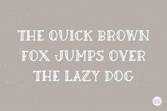 FRESH BREW Farmhouse Serif Font Product Image 2