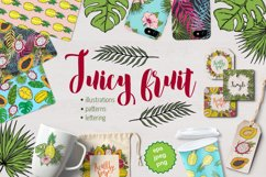 Botanical tropical vector set of fruits and leaves Product Image 1
