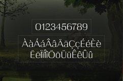 Web Font Celosia Product Image 4